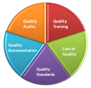knowledge management audit report