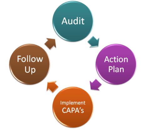 earnings management and auditors